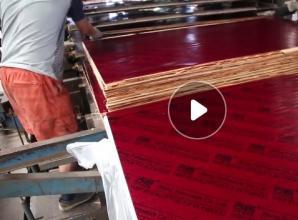 桉木板覆膜热压